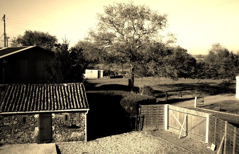 tourisme-rural.jpg
